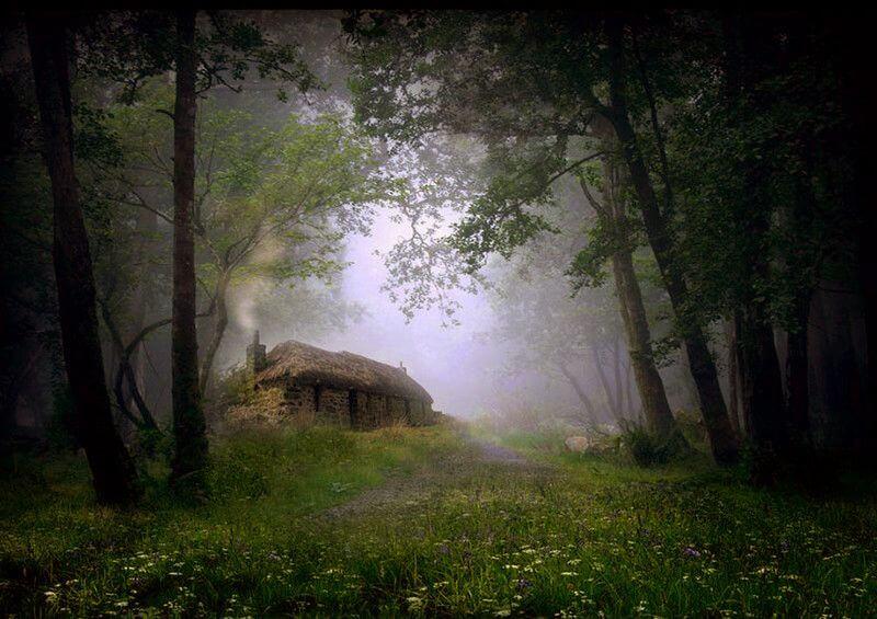 Котедж відлюдника в лісі. Шотландія.