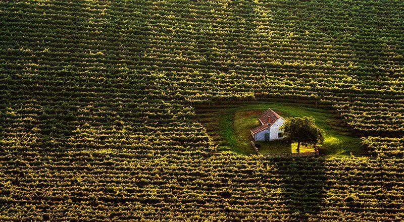 Будиночок відлюдника в полі. Угорщина.