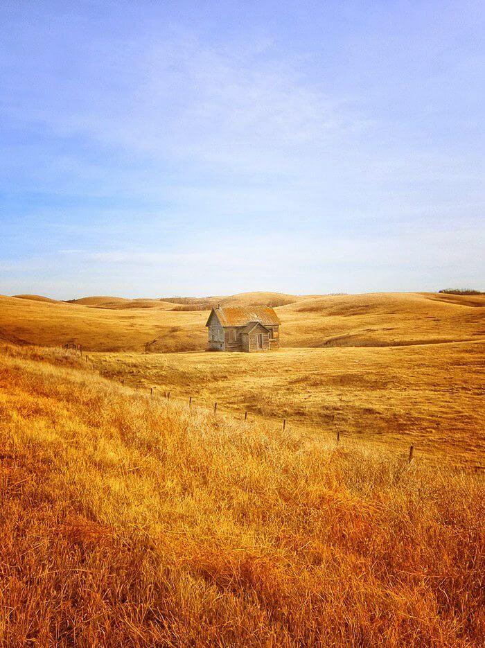 Дім відлюдника у золотому полі. Альберта. Канада.
