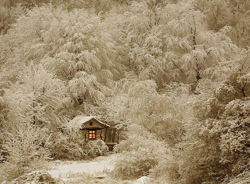 Мисливський будиночок в зимовому лісі.