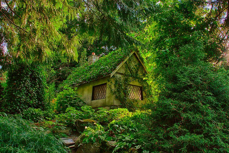 Укритий лісом будинок відлюдника
